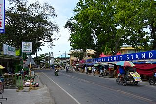 Moalboal Municipality of the Philippines in the province of Cebu