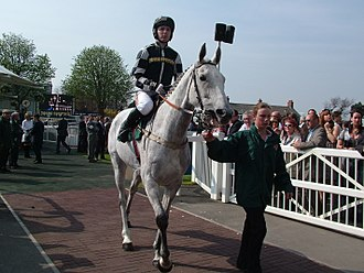 With Tony Dobbin aboard, leaving the parade ring at Aintree prior to his Melling Chase victory in April 2007.