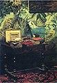 Monet - a-corner-of-the-studio(1).jpg