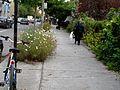 Montréal rue St-Denis 369 (8212692729).jpg