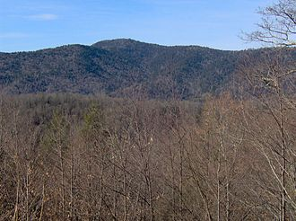 Mount Collins - Mount Collins, looking west from Newfound Gap Road