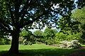 Mount Airy Arboretum - DSC03843.JPG