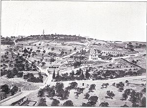 Mount of Olives - Mt. of Olives, circa 1899