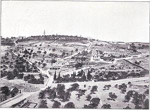 Mount of Olives - Mt. of Olives, circa 1899