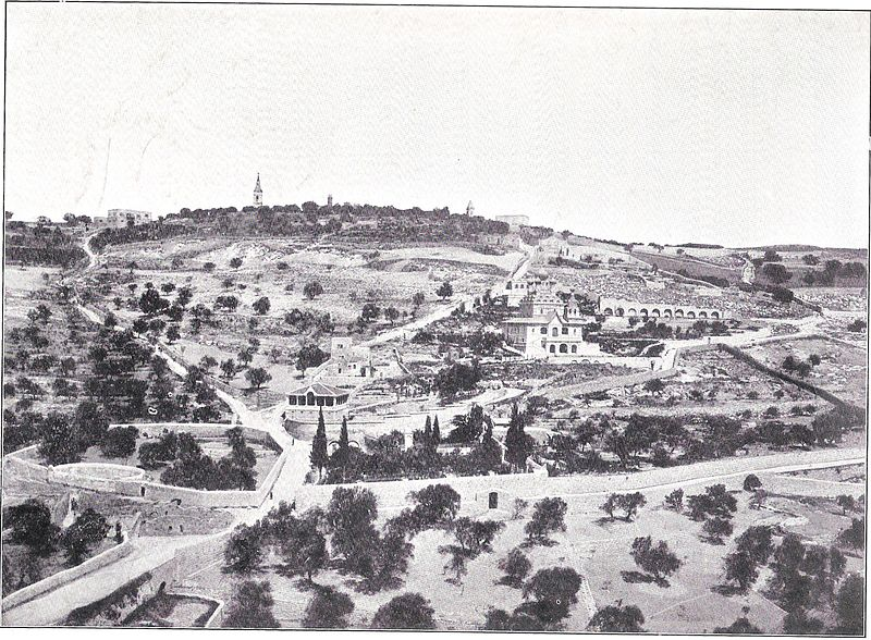 http://upload.wikimedia.org/wikipedia/commons/thumb/7/73/Mount_of_Olives_%28before_1899%29.jpg/800px-Mount_of_Olives_%28before_1899%29.jpg