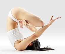 220px Mr yoga upward lotus unsupported yoga asanas Liste des exercices et position à pratiquer
