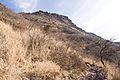 Mt.Yufudake 13.jpg