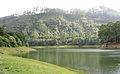 Munnar - views from Munnar (32).jpg
