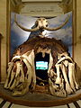 NHM - Haus aus Mammutknochen.jpg