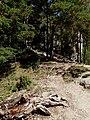 NPR Súľovské skaly (10).jpg