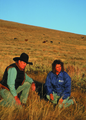 NRCSMT01029 - Montana (4907)(NRCS Photo Gallery).tif