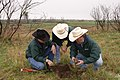 NRCS Texas range management specialists Kent Ferguson (right), Lem Creswell (center) and soil scientist Nathan Haile examine soil and plant conditions on rangeland. (25018184401).jpg