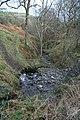 Nant Dunant - Dunant stream - geograph.org.uk - 667903.jpg