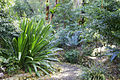 National botanical gardens06.jpg