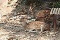 Nature 0190629-WA0124.jpg