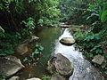 Nature of Langkawi (12).JPG