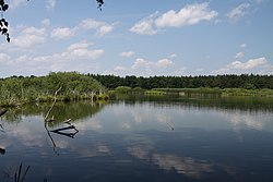 Nature reserve Rod in summer 2011 (28).JPG