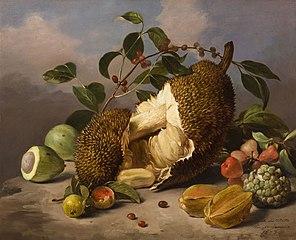 Natureza-morta com frutas (atribuído)