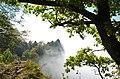 Naturpark Obere Donau, Nebelschwaden hängen an den Felsen des Oberen Donautals.jpg