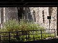 Newport Castle 020.jpg