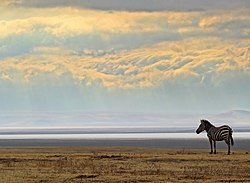 Ngorongoro-Crater-Morning-Scene.JPG