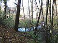 Niewiadoma-rzeka Cetynia.jpg