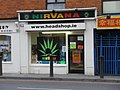 Nirvana head shop.jpg