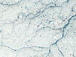 Northern Manitoba, Canada by Planet Labs.jpg
