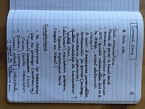 Notes communs 101 - Santé 1.jpg