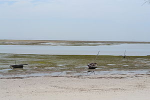 Nyali Beach from the Reef Hotel during low tide in Mombasa, Kenya 3.jpg