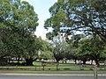 OIC mt hawthorn braithwaite park 1.jpg