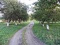 Obeliai, Lithuania - panoramio (80).jpg