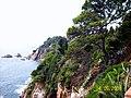 Ogród botaniczny Blanes - panoramio (4).jpg