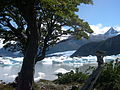 Onelli lake.jpg