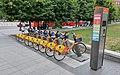 Orange bikes in Vilnius (2019).jpg