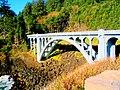 Oregon bridge.jpg