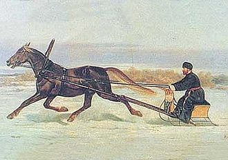 Orlov Trotter - Orlov Trotter in racing sleigh