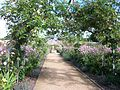 Osborne House Walled Garden 2.jpg