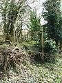 Overgrown Footpath - geograph.org.uk - 1765871.jpg