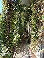 Overgrown porch 2014 Josephine.jpg