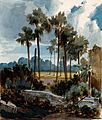 Palmyra palm trees (Borassus flabellifer) near Madras, India Wellcome V0043428.jpg