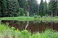 Panoramatická stezka u Bečova - rybníček.jpg
