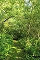 Parkbos-Uilenbroek 42.jpg