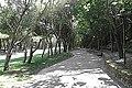Parque de Cidade - panoramio (1).jpg