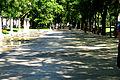 Paseo de Recoletos (2).jpg