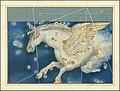 Pegasus - Johann Bayer.jpg