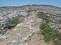 Pembroke, Malta - panoramio (53).jpg