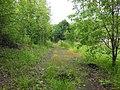 Permskiy r-n, Permskiy kray, Russia - panoramio (1248).jpg