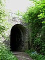 Petestrian Tunnel to Rodway Hill Common. - panoramio.jpg