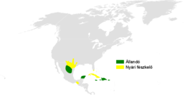 Petrochelidon fulva distribution map.png